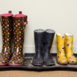 Rubber boots — Stock Photo #9080945