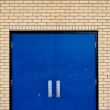 Stock Photo: Gymnasium door