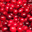 Cranberries boiling in water — Stock Photo