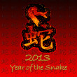 Year of the snake. — Foto de Stock