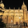 Salamanca Cathedral. — Stock Photo