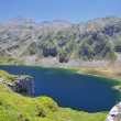 Stock Photo: Somiedo lakes.