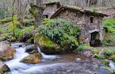Watermill. — Stock Photo