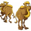 Funny Camel — Stock Vector #9454514