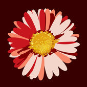 Daisy Flower Illustration. Vector Background. — Stock Vector