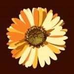 Daisy Flower Illustration. Vector Background. — Stock Vector #9392177