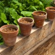 Terracotta pots with soil - Stock Photo