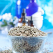 Dried dill seeds - Stock Photo