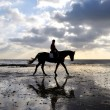 Silhouette of a Horse Rider Walking on Beach — Stock Photo