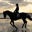 Royalty-Free Stock Photo: Silhouette of a Horse Rider Cantering on the Beach