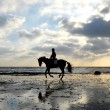 Royalty-Free Stock Photo: Silhouette of Horse Rider Galloping on the Beach