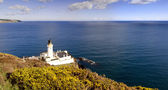 Lighthouse with Yelllow shrub and sea in background — Stock Photo