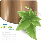 Wood plank with green leaves and butterfly — Stock Vector