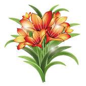 Bunch of orange lilies — Stock Vector