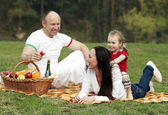 Beautiful happy family resting in the park — Stock Photo