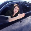Stock Photo: Woman sitting in the car