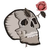Skull with rose — Stock Vector