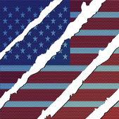 American carbon flag — Stock Vector