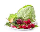 Setof vegetables — Stock Photo