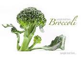 Warzywa świeże i smaczne na czarnym tle — Zdjęcie stockowe
