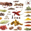 Collection of different spices and herbs — 图库照片