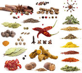 Collection of different spices and herbs — Stock Photo