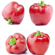 Collection of red bell peppers — Stock Photo