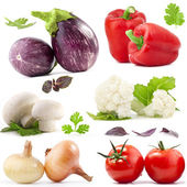 Collection of vegetables — Stockfoto