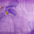 Flowers of on the texture of fabric — Stock Photo