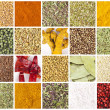 Collection of different spices and herbs — Zdjęcie stockowe