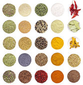 Collection of spices and herbs — Stock Photo
