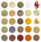 Colección de especias y hierbas — Foto de Stock