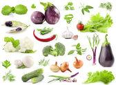 Collectie van groenten — Stockfoto