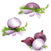 Collection of onions — Stockfoto