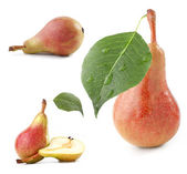 Collection on pears — Stock Photo