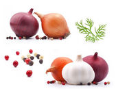 Collection of onion and garlic — Stock Photo