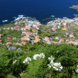 Porto Moniz - Madeira — Stock Photo #8275777