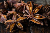 Yıldız anason — Stok fotoğraf