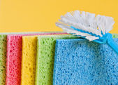Brush and sponges for cleaning — Stock Photo