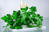 Salsa verde — Foto Stock