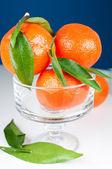 Tangeriner i vas på blå bakgrund — Stockfoto