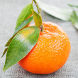 Mandarin with green leaves — Stock Photo