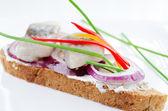 Close up with herring bites — Stock Photo