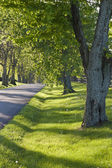 Country road in Kentucky at spring — Stock Photo