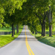 Country road - Foto Stock