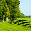 Country Scenery - Photo