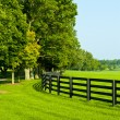 Country Scenery - Stock fotografie