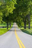 Landsväg — Stockfoto