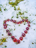 Heart is melting the snow — Stock Photo