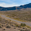 A road in the desert of Nevada — Stock Photo